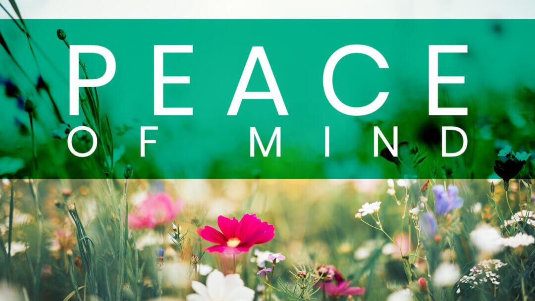 WEEK 5: Peace of Mind