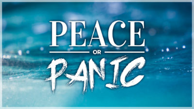 WEEK 13: Peace or Panic