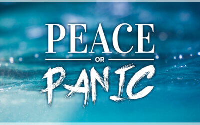 WEEK 13: Peace or Panic