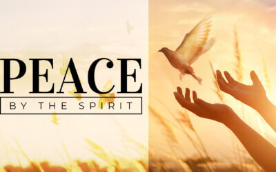 WEEK 17: Peace by the Spirit