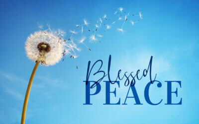 WEEK 27: Blessed Peace