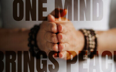 WEEK 42: One Mind Brings Peace