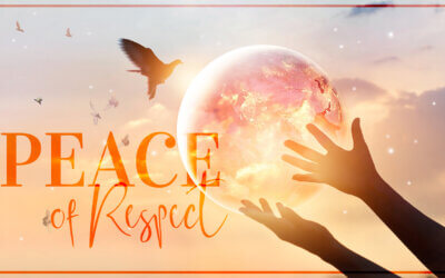 WEEK 47: Peace of Respect