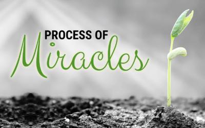 Week 14: Process of Miracles