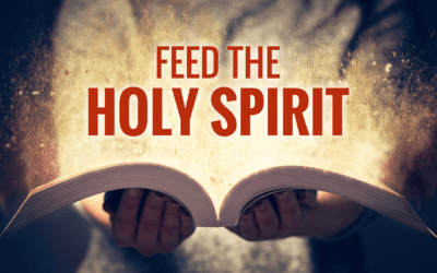 Feed the Holy Spirit
