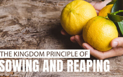 Kingdom Principle of  Sowing and Reaping