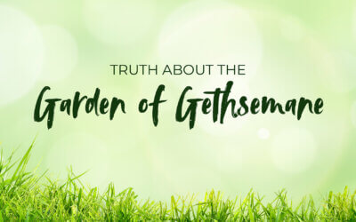 The Truth About the Garden of Gethsemane