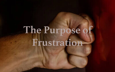 The Purpose of Frustration