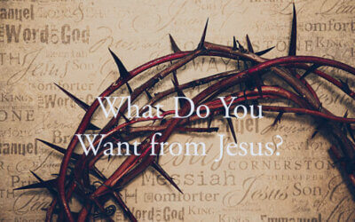 What Do You Want from Jesus?