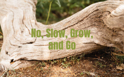 No, Slow, Grow, and Go