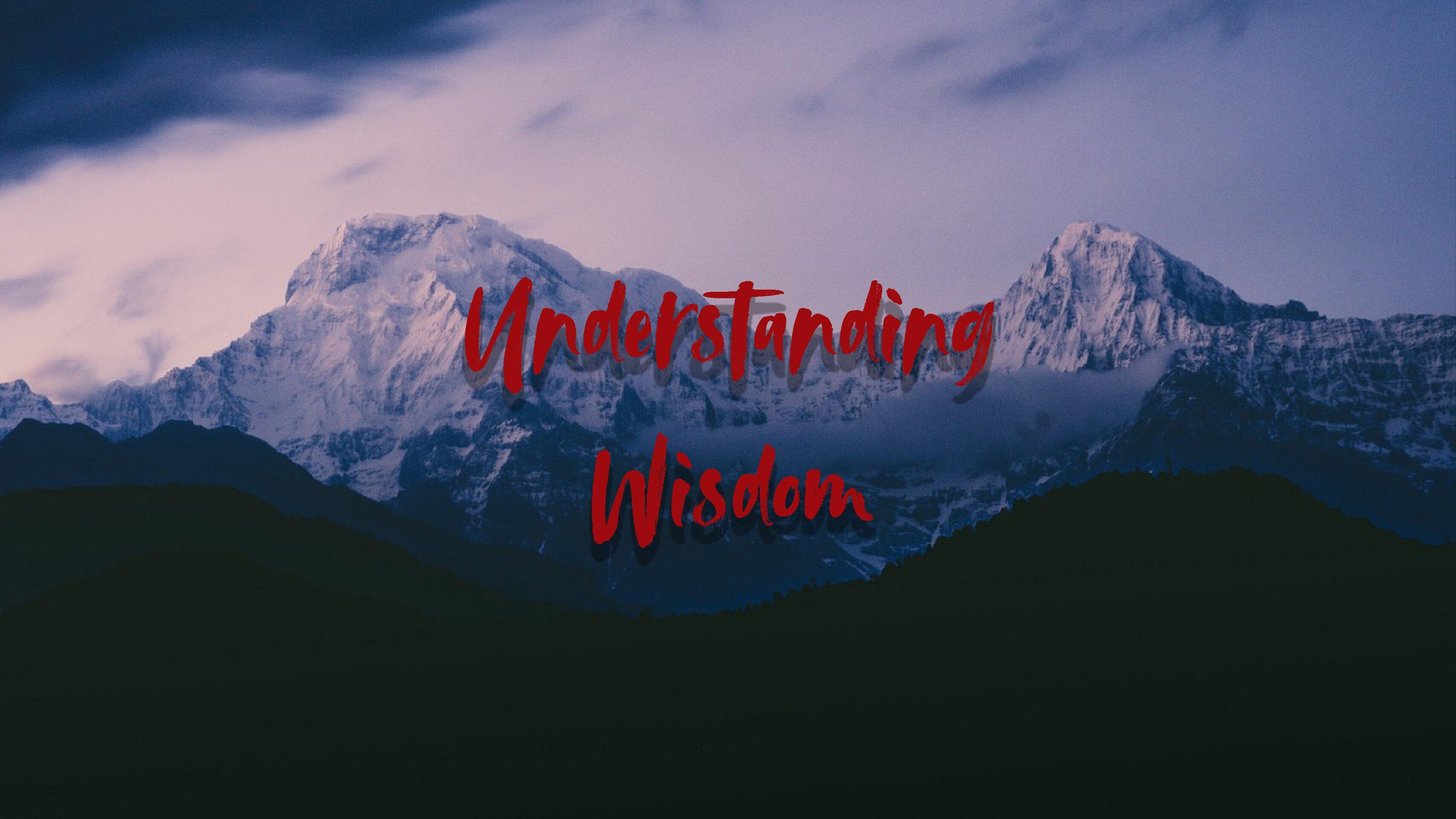 Understanding Wisdom